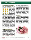 0000078624 Word Templates - Page 3