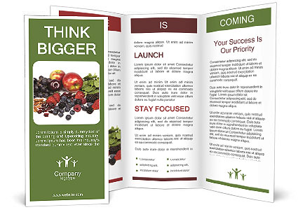 0000078626 Brochure Template