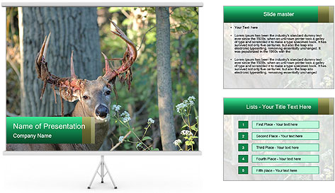 0000078638 PowerPoint Template
