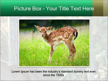 0000078638 PowerPoint Template - Slide 15