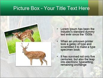 0000078638 PowerPoint Template - Slide 20
