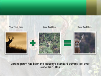 0000078638 PowerPoint Templates - Slide 22