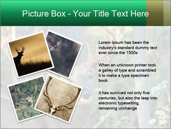 0000078638 PowerPoint Templates - Slide 23