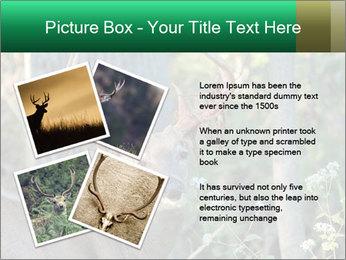 0000078638 PowerPoint Template - Slide 23