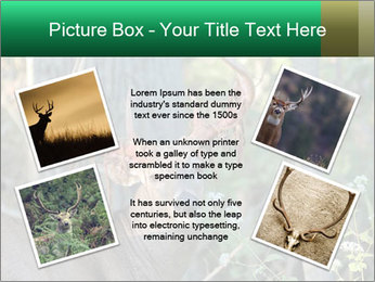 0000078638 PowerPoint Templates - Slide 24