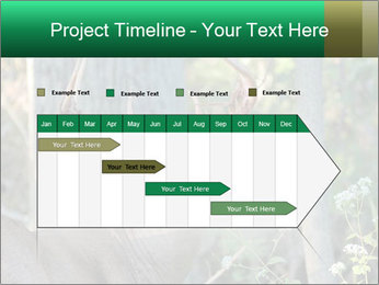 0000078638 PowerPoint Template - Slide 25