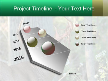 0000078638 PowerPoint Templates - Slide 26