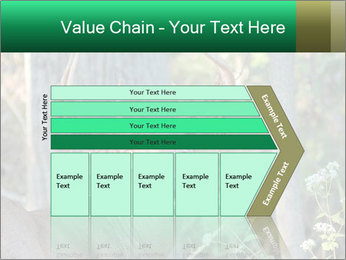 0000078638 PowerPoint Template - Slide 27