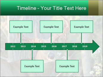 0000078638 PowerPoint Templates - Slide 28