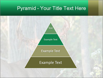 0000078638 PowerPoint Template - Slide 30