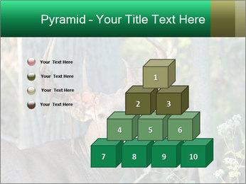 0000078638 PowerPoint Template - Slide 31