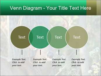 0000078638 PowerPoint Templates - Slide 32