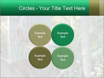 0000078638 PowerPoint Template - Slide 38