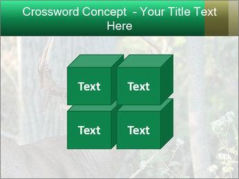 0000078638 PowerPoint Template - Slide 39