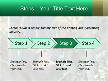 0000078638 PowerPoint Templates - Slide 4