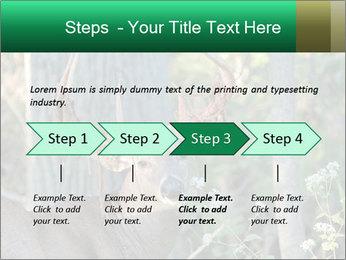 0000078638 PowerPoint Template - Slide 4