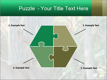 0000078638 PowerPoint Template - Slide 40