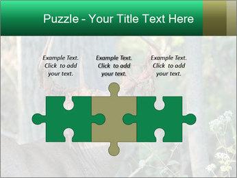 0000078638 PowerPoint Template - Slide 42