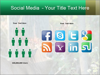 0000078638 PowerPoint Templates - Slide 5