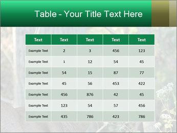 0000078638 PowerPoint Template - Slide 55