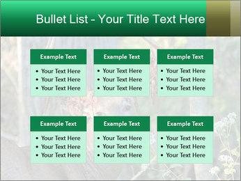 0000078638 PowerPoint Template - Slide 56