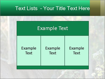 0000078638 PowerPoint Templates - Slide 59