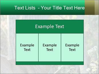 0000078638 PowerPoint Template - Slide 59