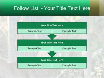 0000078638 PowerPoint Template - Slide 60