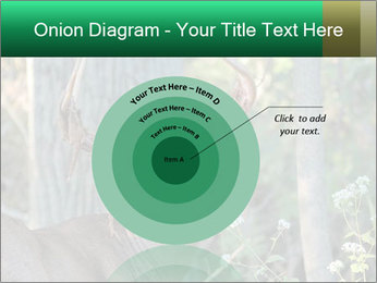 0000078638 PowerPoint Templates - Slide 61