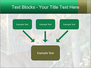 0000078638 PowerPoint Templates - Slide 70