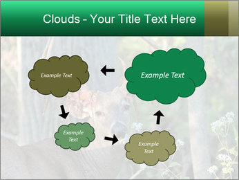 0000078638 PowerPoint Template - Slide 72
