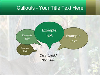0000078638 PowerPoint Templates - Slide 73