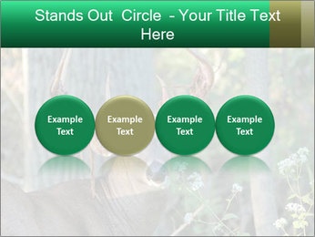 0000078638 PowerPoint Templates - Slide 76