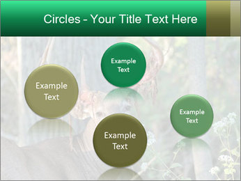 0000078638 PowerPoint Templates - Slide 77