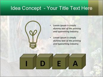 0000078638 PowerPoint Template - Slide 80