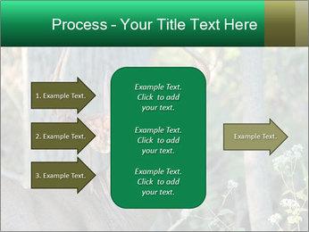 0000078638 PowerPoint Template - Slide 85