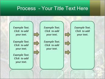 0000078638 PowerPoint Template - Slide 86