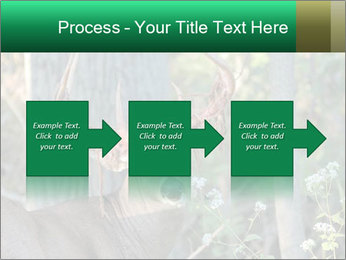 0000078638 PowerPoint Templates - Slide 88