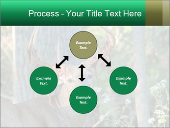 0000078638 PowerPoint Templates - Slide 91