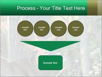 0000078638 PowerPoint Template - Slide 93
