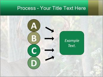 0000078638 PowerPoint Template - Slide 94