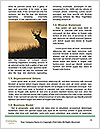 0000078638 Word Templates - Page 4