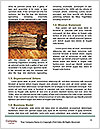 0000078646 Word Templates - Page 4