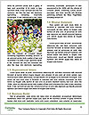0000078648 Word Templates - Page 4