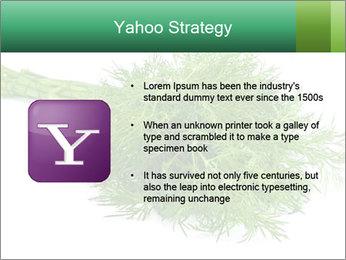 0000078649 PowerPoint Template - Slide 11