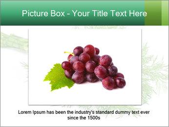 0000078649 PowerPoint Template - Slide 16
