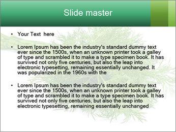 0000078649 PowerPoint Templates - Slide 2