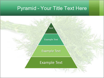 0000078649 PowerPoint Templates - Slide 30