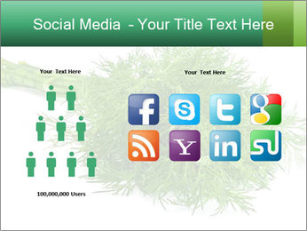 0000078649 PowerPoint Template - Slide 5