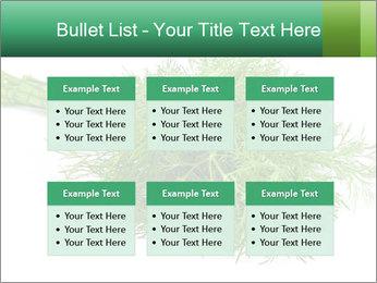 0000078649 PowerPoint Templates - Slide 56